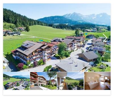 Fuchs Söll, Österreich 2
